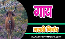 cow-essay-in-marathi
