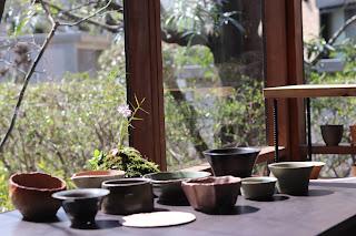 山野草盆栽の鉢、陶盤