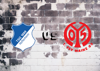 Hoffenheim vs Mainz 05  Resumen