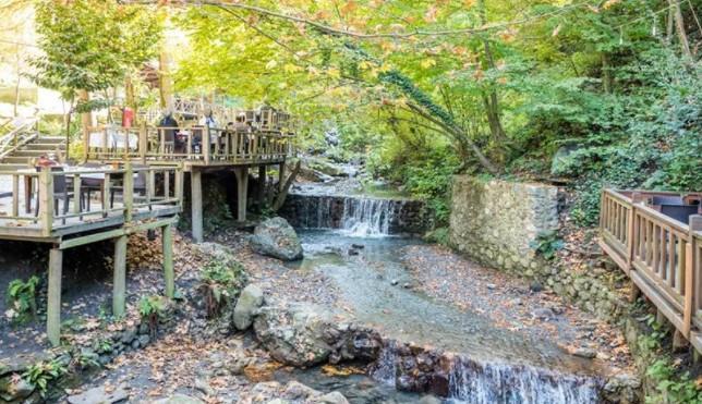 istanbula yakın doğal güzellikler maşukiye şelaleleri