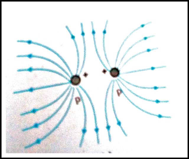 विद्युत क्षेत्र रेखाएँ क्या है,