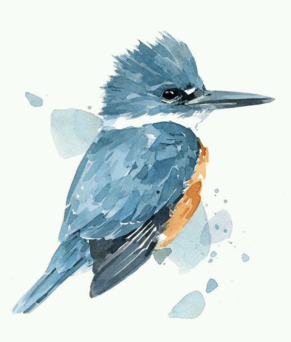 lukisan burung cat air
