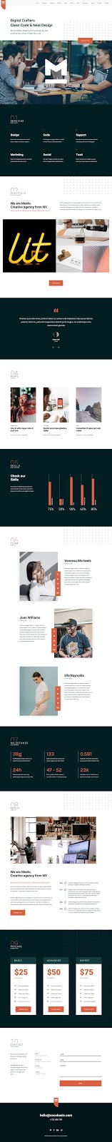 Meelo WordPress theme review