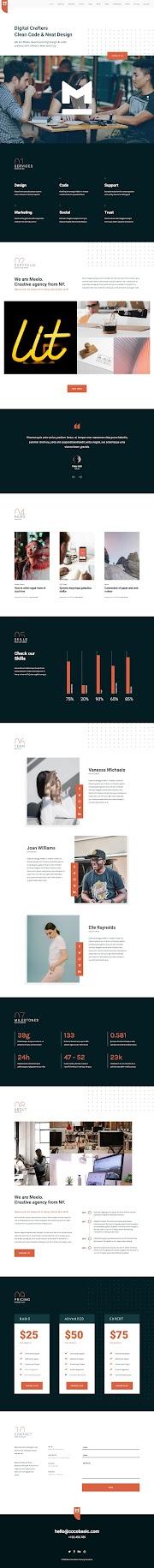 [Wp Theme] Meelo One Page WordPress Theme - Premium OnePage Theme