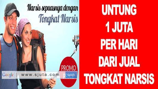 Bisnis Jual Tongsis