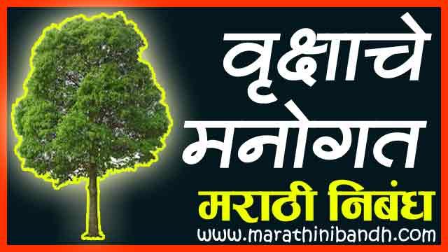 वृक्षाचे मनोगत मराठी निबंध । Vruksha Che Manogat Essay In Marathi