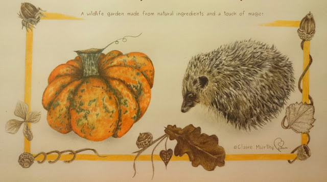 Wildlife Garden Blog Kent : Drawing of a hedgehog in the garden.