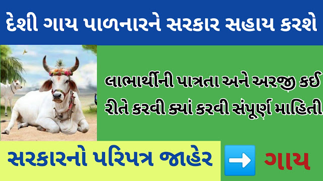 Gujarat Government Will be help Cows palanhar
