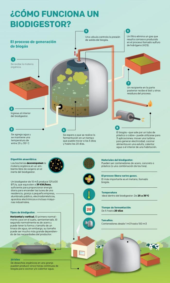 Funcionamiento de un biodigestor