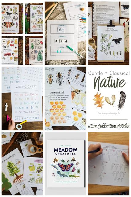 Homeschool Nature Unit Printables