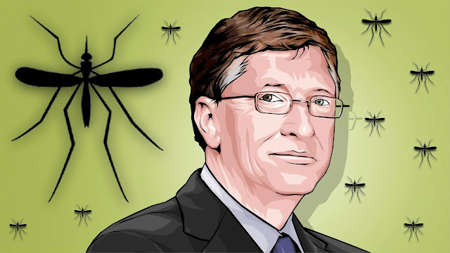 Bill Gates and Mosquitoe picture