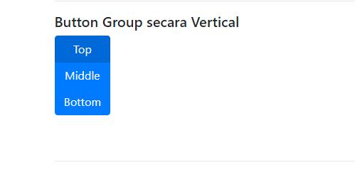 Hasil button group secara vertikal