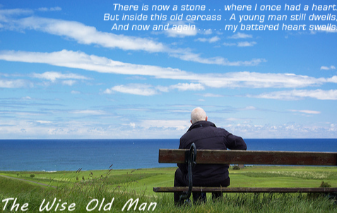 A Walk With A Wise Old Man