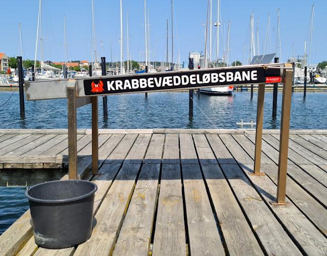 """Drei geniale Rast- und Spielplätze auf der Fahrt in den Dänemark-Urlaub nahe der Autobahnen E45 und E20. Eine Attraktion bei dieser Rast: Eine krabbevæddeløbsbåne, auf Deutsch """"Krabbenwettlaufbahn"""", für die Kinder, die Krebse fangen."""