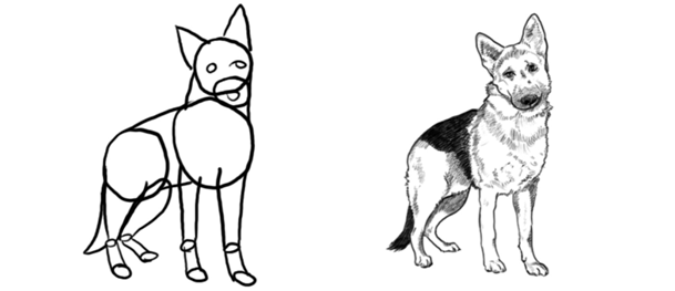 köpek resmi çizim örnekleri