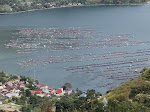 Kemenko Marves Identifikasi Keramba Jaring Apung di Danau Toba