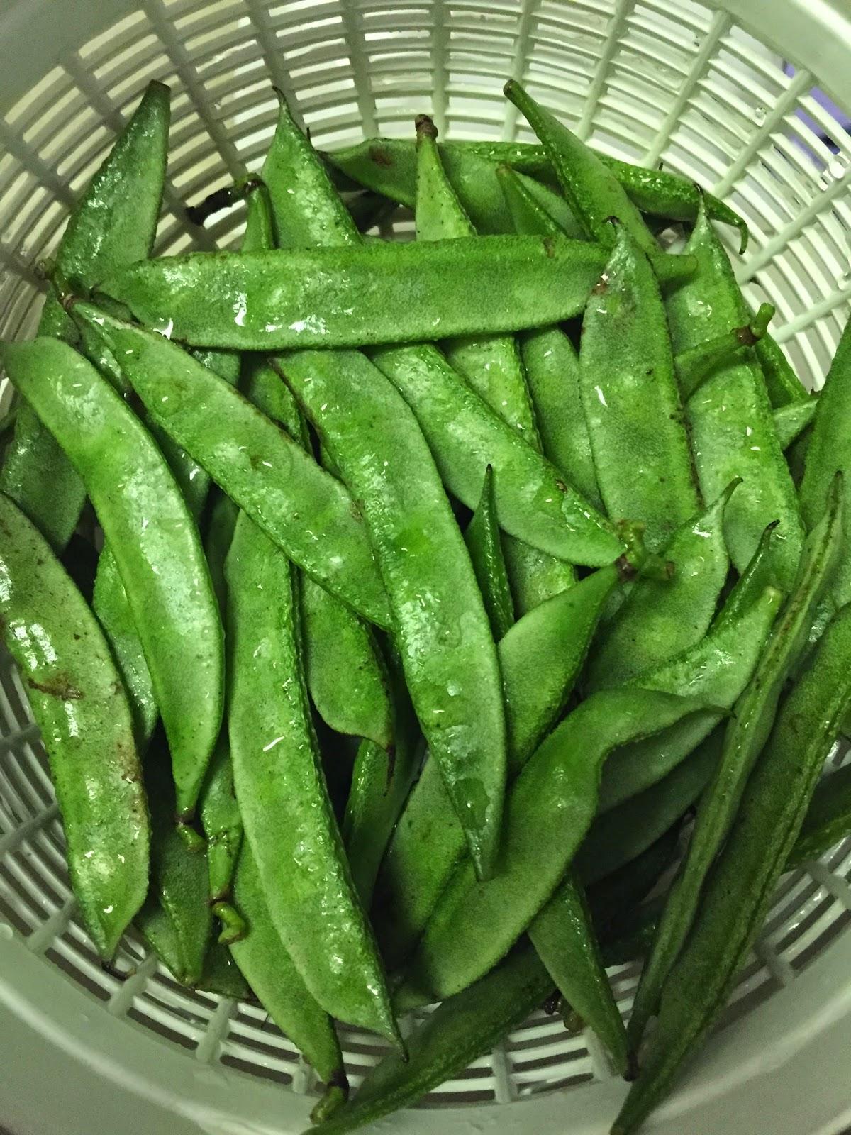 Chikkudukaya Nuvulapodi Kura (Broad beans Curry with
