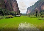 Lembah Harau Tetap Memukau: Mengintip Keunikan Lembah Harau