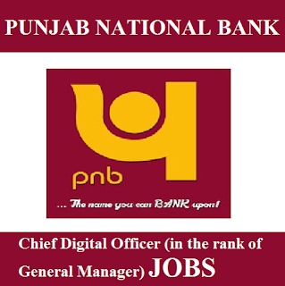 Punjab National Bank, PNB, New Delhi, Bank, Graduation, GM, Chief Digital Officer, freejobalert, Sarkari Naukri, Latest Jobs, pnb logo