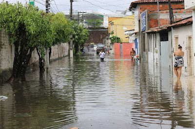 Chuvas podem aumentar casos de leptospirose