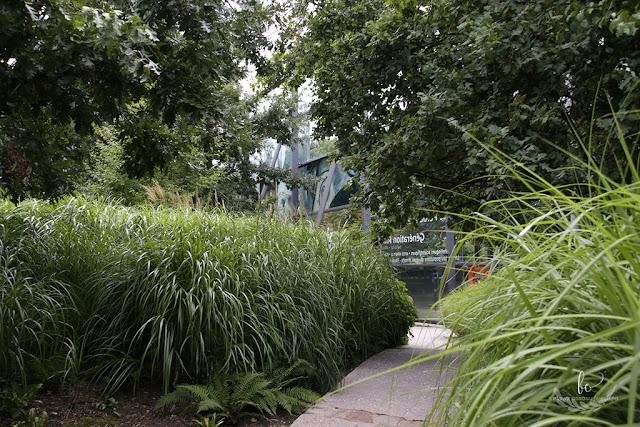 Paryz ogród