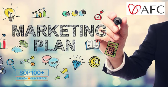 MARKETING PLAN Bisnis AFC