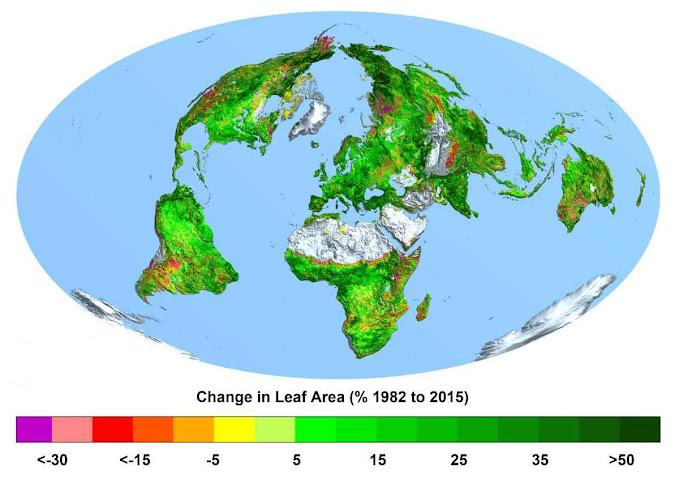 Mapa mostra aumento da superfície foliar nos últimos 33 anos. Fonte: CREAF