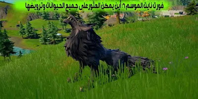 how to tame animals in fortnite season 6 wolves