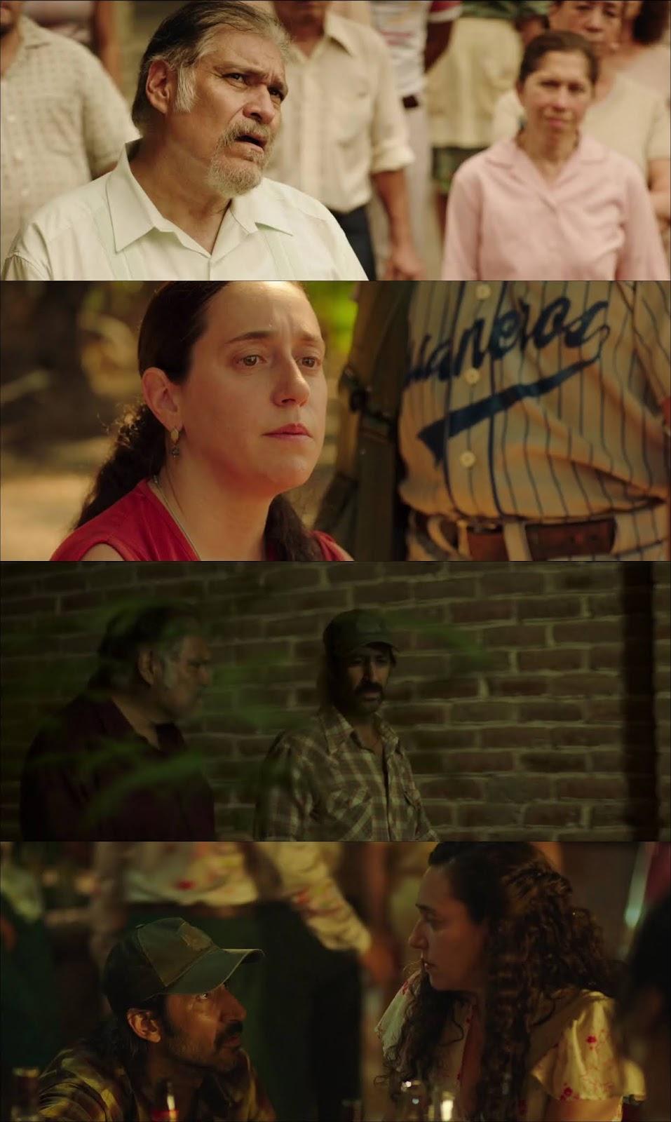 Polvo HD 1080p Latino (2019)