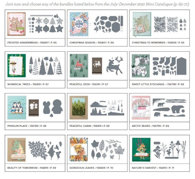 Free bundles from the Stampin' Up! July-December 2021 Mini Catalog a new Demonstrator can select along with $125 in merchandise for a Starter Kit for only $99