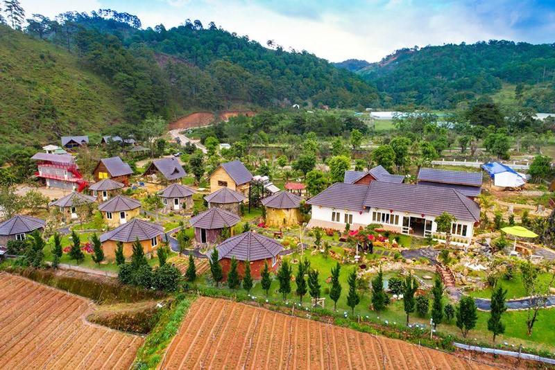 Top 10 homestay Đà Lạt đẹp nhất – view hút hồn mới nổi 2018