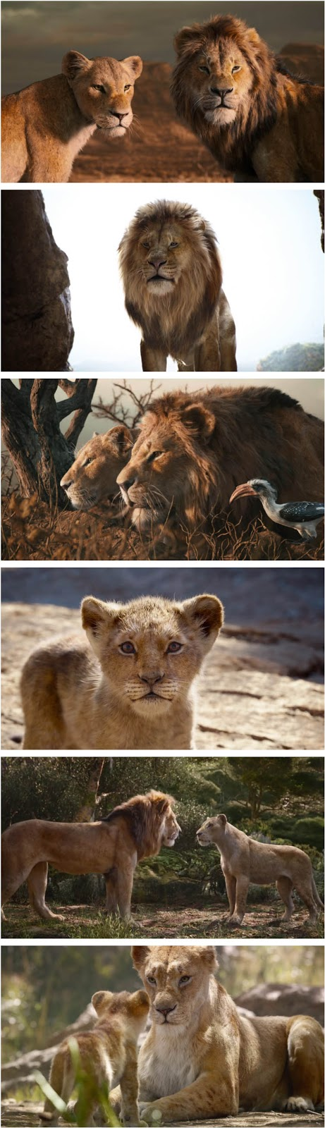 the lion king full movie download in hindi filmyzilla