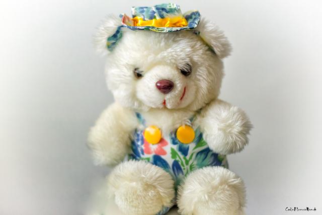 Retrato de un osito peluche con sombrero.