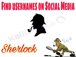 sherlock kali linux find username of social media