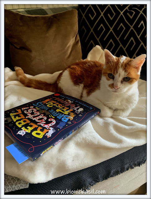 Book Reviews with Amber  #140 ©BionicBasil® Rebel Cats Brave Tales of Feisty Felines