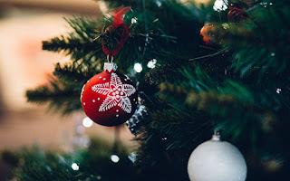 Χριστουγεννιάτικη εορταγορά από το Οικοτροφείο Στέγη Αυτιστικών Ατόμων «Ελένη Γύρα»