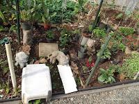 Garden accessories, Foster Community Garden - Honolulu, HI