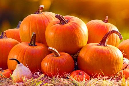 திருக்குறள் கதைகள் (Thirukkural Kathaigal) : (429) - Pumpkin