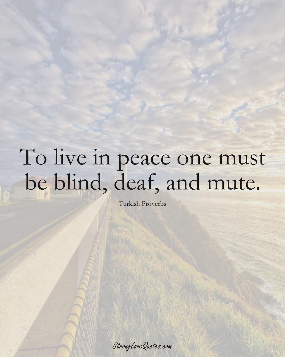 To live in peace one must be blind, deaf, and mute. (Turkish Sayings);  #MiddleEasternSayings