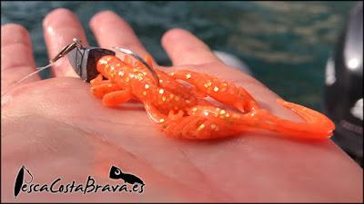 bait breath virtual craw pesca costa brava jjpescasport 2 - SARGOS con CANGREJO de vinilo