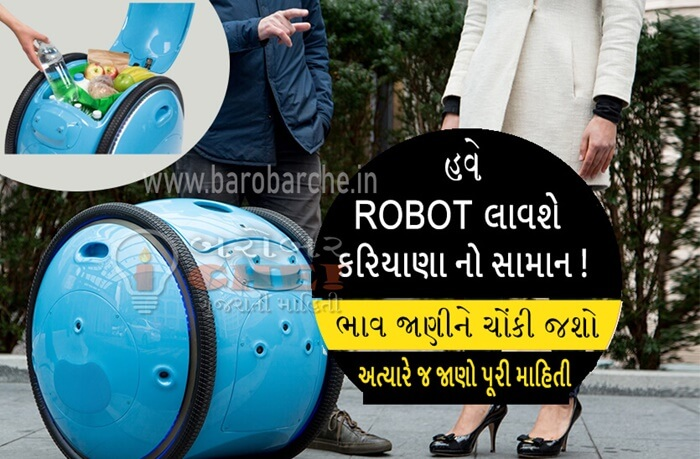 Geeta Robot for carrying cargo india
