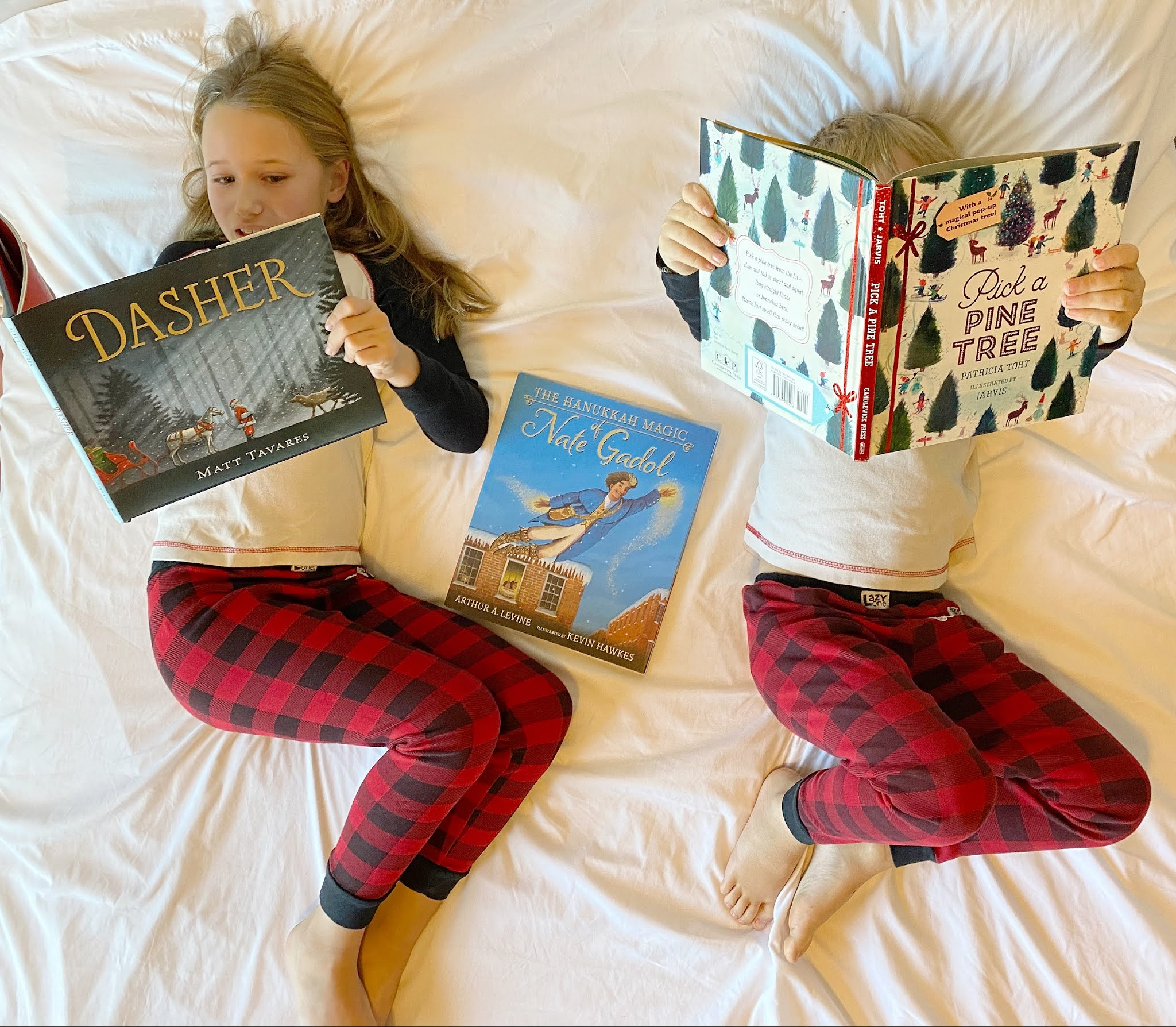 Holiday Book Gift Ideas for Kids