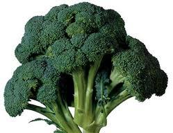 Brokoli : Lawan Sepadan Penyakit Kanker