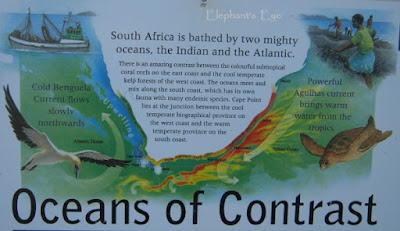 Indian and Atlantic Oceans