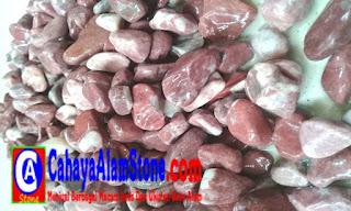 Harga Batu Koral Merah Ati Besar
