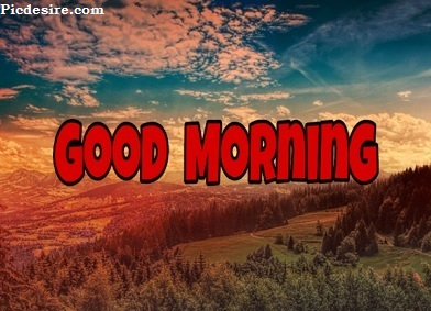 Good Morning Photo | Best 25 Good Morning Images HD