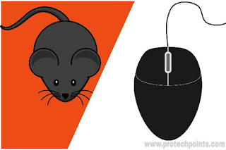 What is a computer mouse? Types and  Features of mouse