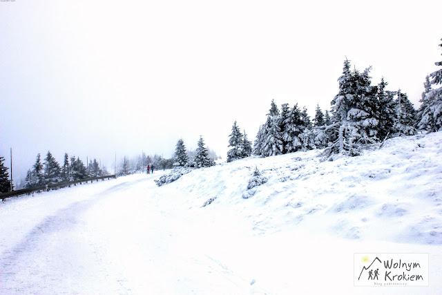 Pradziad czechy zimą