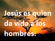 Predica: Obedecer a Dios produce libertad y bendición.