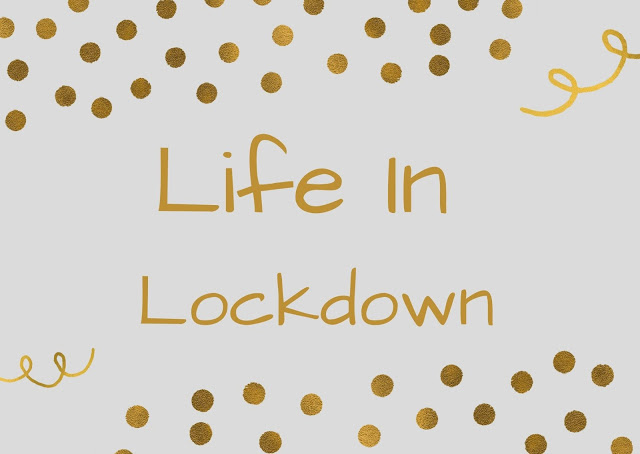 Life In a Lockdown Logo